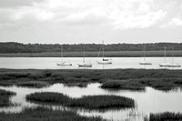 Marsh and Sailboats