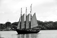 Alliance Tall ship