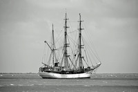 Picton Castle Tall Ship