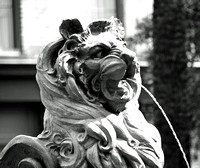 Cotton Exchange Lion