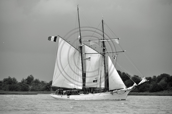 French tall ship