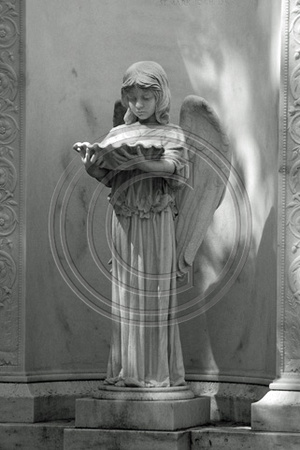 Girl Angel with Shell