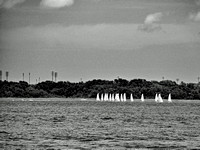 Charleston Sailboats